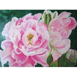 Peonie, kwiaty (60x80cm)