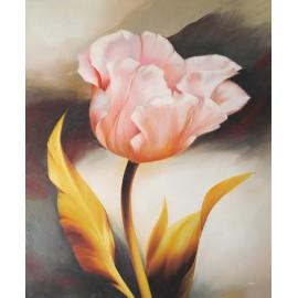 Tulipan (50x60cm)