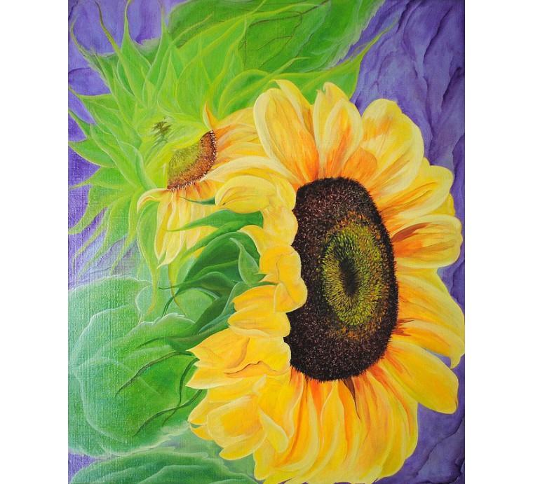 Słoneczniki (50x60cm)